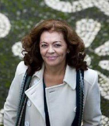 Wook.pt - Margarida Gaspar de Matos