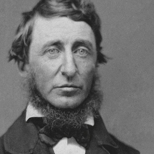 Wook.pt - Henry David Thoreau