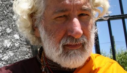 Wook.pt - Alfredo Sfeir-Younis