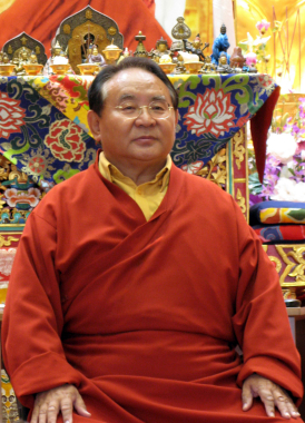 Wook.pt - Sogyal Rinpoche