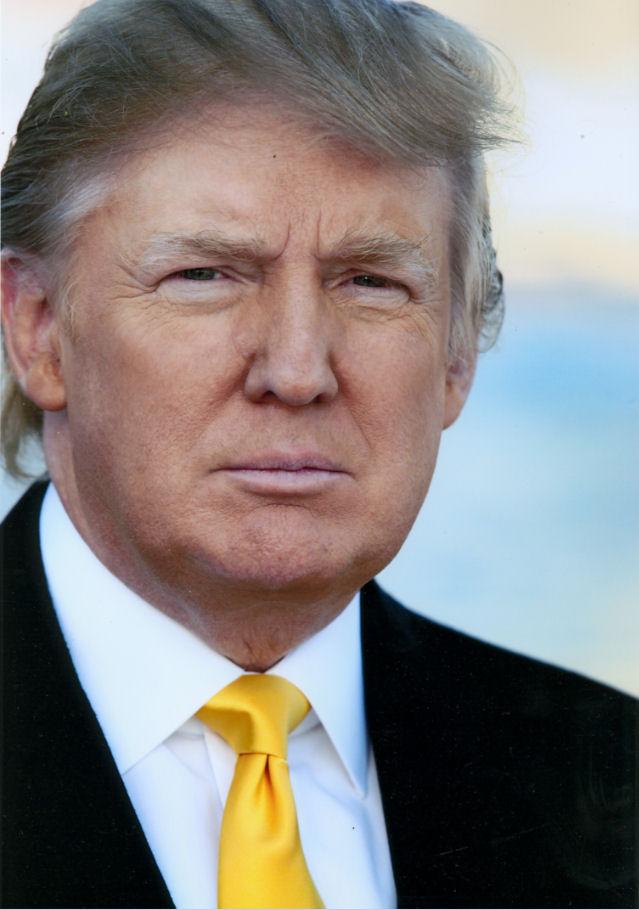 Wook.pt - Donald J. Trump