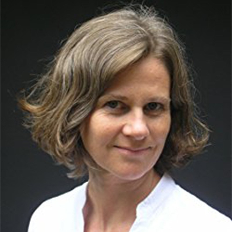 Wook.pt - Alice Pantermüller